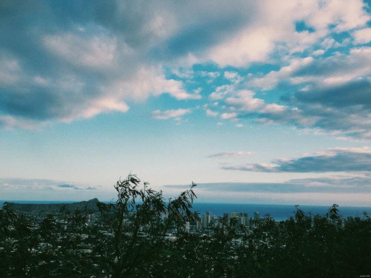 丘の上の写真1