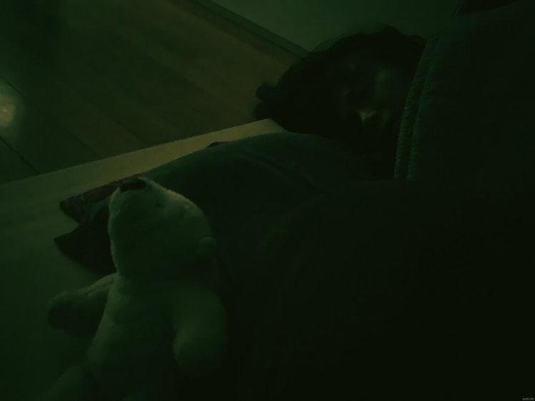 夜の写真1