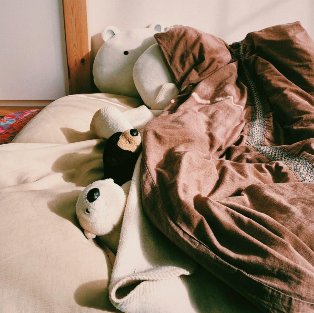 寝ている熊たちの写真