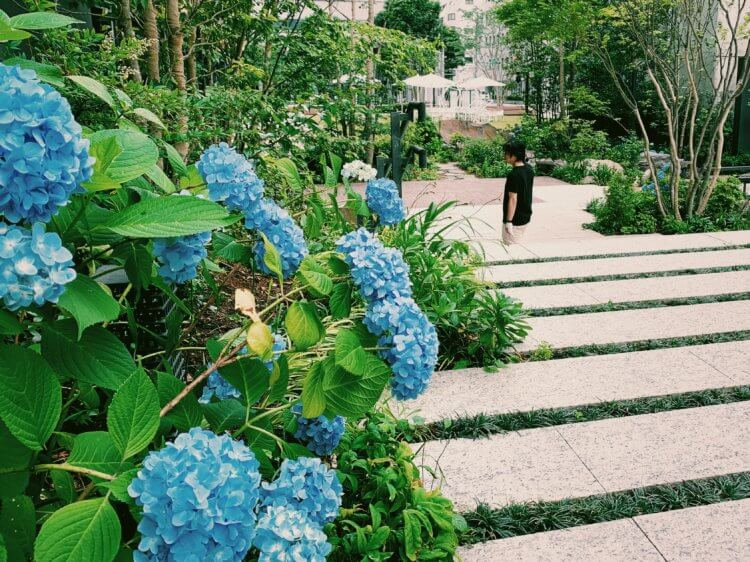 6月の神田スクエアの写真4